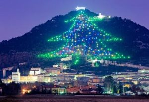 Italy Chrismas Tree on Mountain